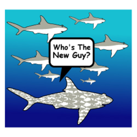 Who's The New Guy? Logo