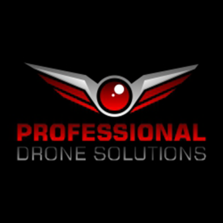 Professional Drone Solutions Logo