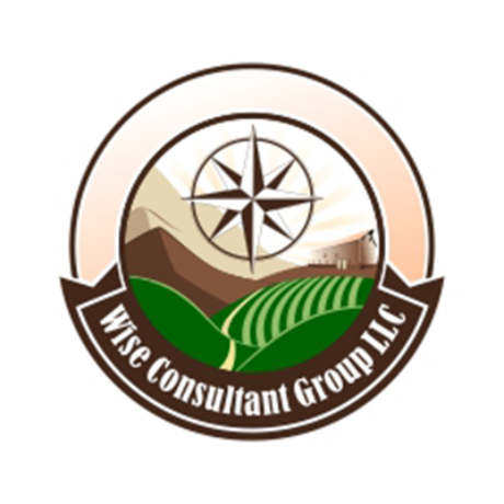 Wise Consultant Group LLC Logo