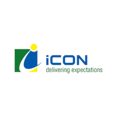 Icon Delivering Expectations Logo