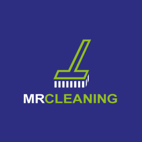 Mr Cleaning Logo Template