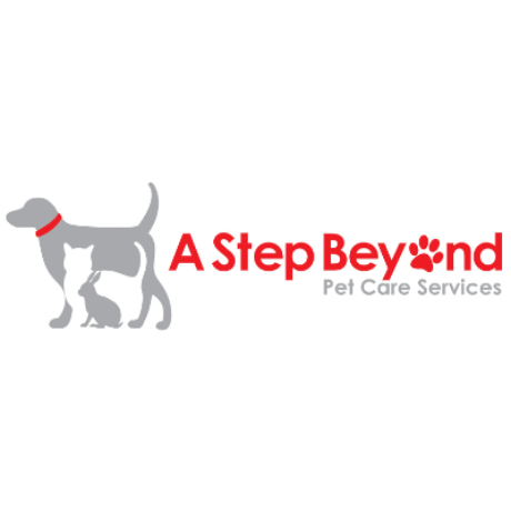A Step Beyond Logo