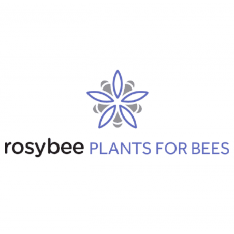 Rosy Bee Plants For Bees Logo