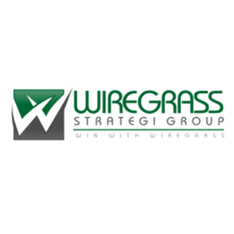 Wiregrass Strategy Group Logo